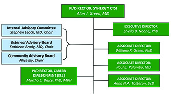 SYNERGY Organizational Structure